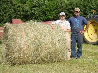 Hay harvest.