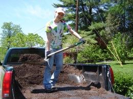 Mulching the front gardens.
