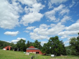 Beautiful day on the Farm.