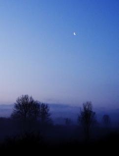 River mist http://wp.me/p1yRFa-UC