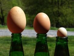 Eggs and chocolate http://wp.me/p1yRFa-14g
