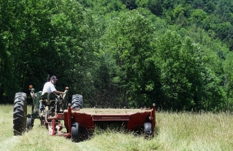 Hay making 101 http://wp.me/p1yRFa-1ow