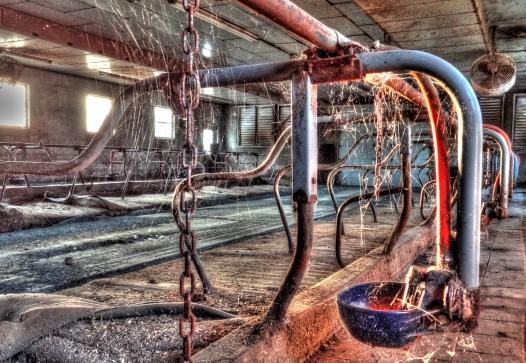 Abandoned dairy, http://wp.me/p1yRFa-1wW
