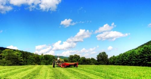 Making hay (today), http://wp.me/p1yRFa-1JK