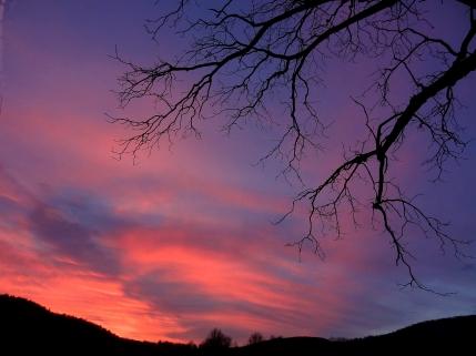 Framed sunset.