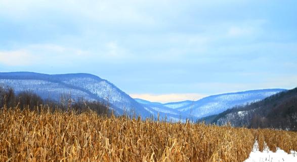 Scenic Pine Creek valley.