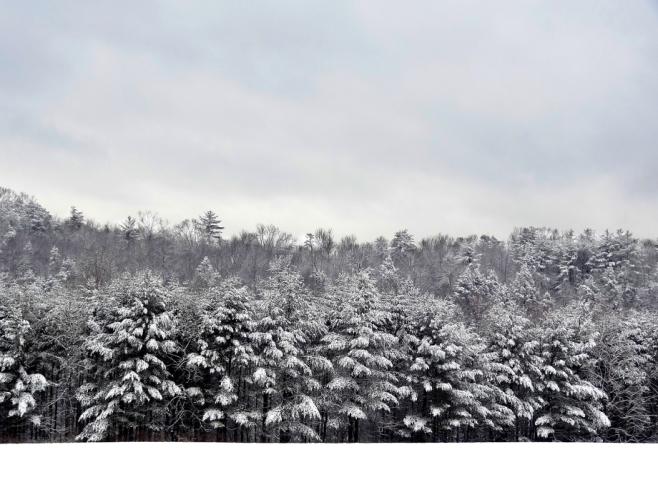 Winter persists, http://wp.me/p1yRFa-2KN