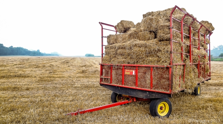 Wagon-full