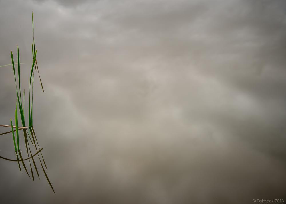 Gloomy2
