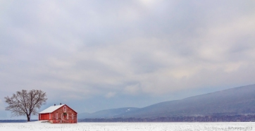 The color of winter, http://wp.me/p1yRFa-3Tm