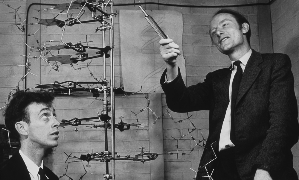 Watson, DNA, and Crick