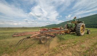 The rotary rake stacks the windrow.