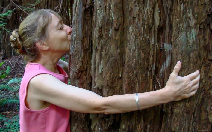 Tree huggers, http://wp.me/p1yRFa-4S5